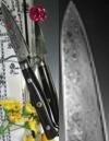 Hiro Knives - Shiki Premium Damascus - Paring