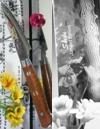 Hiro Knives - Shiki Tsuchime Damascus - Paring
