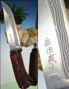 """Takeshi Saji """"Akabi"""""""